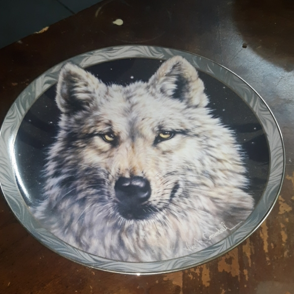 Bradex Artic Nights collectable plate